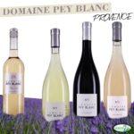 Domaine Pey Blanc Weine